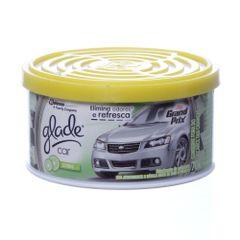 glade-gel-citros-carro