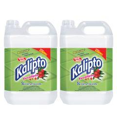 kit-10-litros-de-desinfetante-de-eucalipto-kalipto