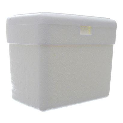 geladeira-isopor-3