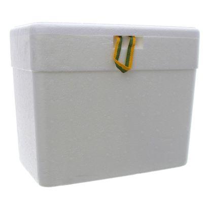 geladeira-isopor-18-litros